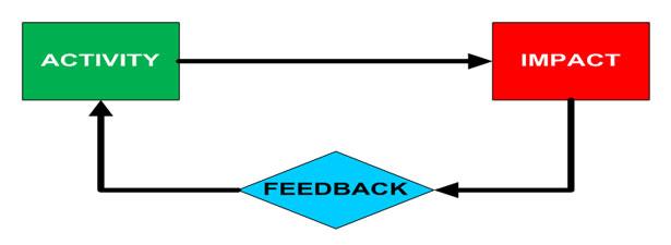 Activity - Impact - Feedback